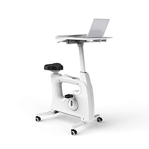 FLEXISPOT V9B höhenverstellbares Tischfahrrad mit Arbeitsplatte